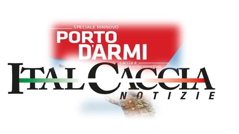 """Help"" nota importante rinnovo Porto d'Armi"