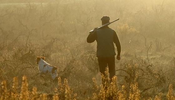 L'importanza della caccia