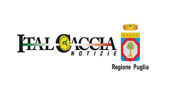 Puglia, approvato il calendario venatorio regionale