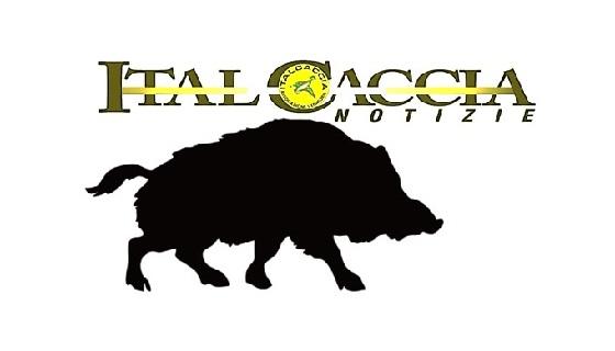 Approvate linee guida per la filiera della selvaggina Italiana