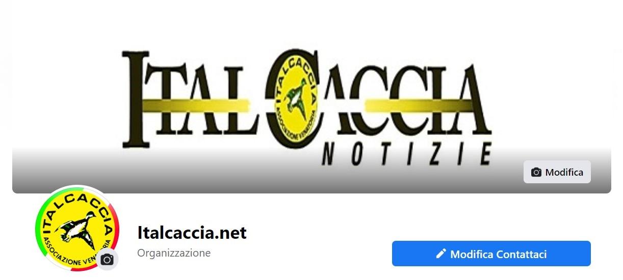 Sedi ItalCaccia