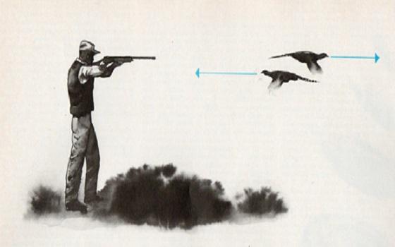 Il tiro a Caccia…