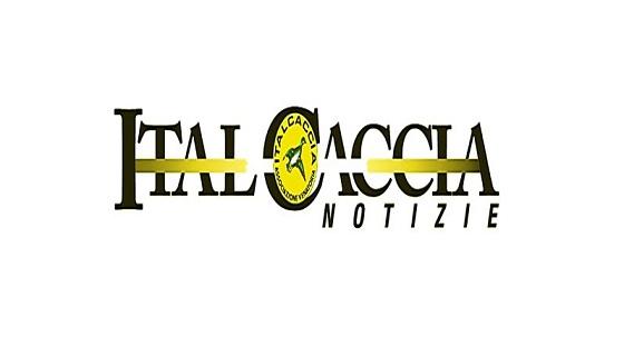 ItalCaccia Cosenza: raccolta fondi all'Azienda ospedaliera di Cosenza