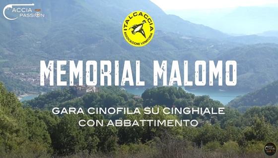 ItalCaccia 2020: Memorial Malomo gara cinofila su cinghiale con abbattimento