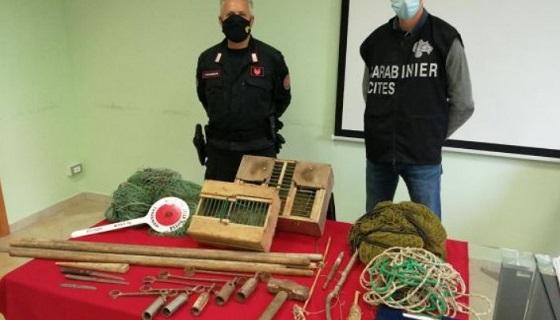 Operazione Pettirosso contro i bracconieri…