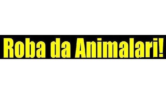 Animalisti a caccia di… cacciatori a Saronno e nel Comasco, ma non ne trovano