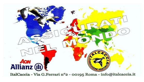 Non fare da te… chiedi sempre assistenza alla tua Associazione. ItalCaccia e ben lieta di consigliarti…!!!