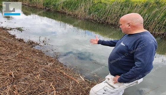 """Canali, pulizia errata, Italcaccia: """"Ecosistema a rischio"""""""