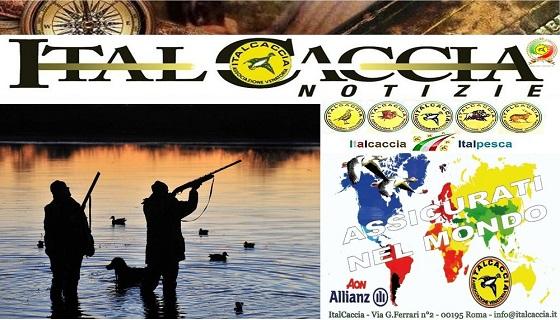 """ItalCaccia aperte tre nuove sezioni """"Pronti a dire la nostra nel settore"""""""