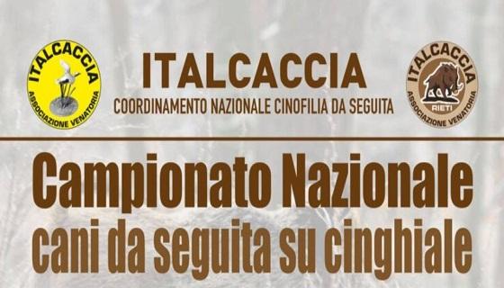 Campionato nazionale ItalCaccia 2021 per cani da seguita su cinghiale