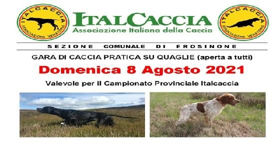 """Sezione Comunale di Frosinone Domenica 8 Agosto 2021 organizza """"Gara di Caccia pratica su Quaglie"""""""