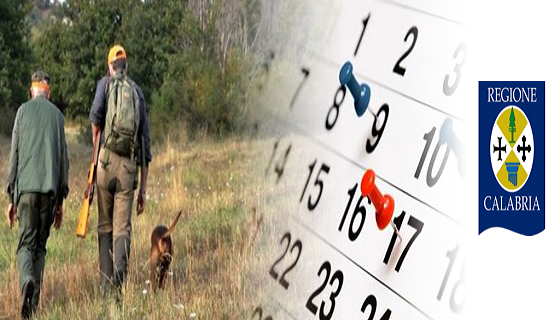 Calabria, modificato il calendario venatorio: sospesa la caccia alla tortora. Ecco da quando